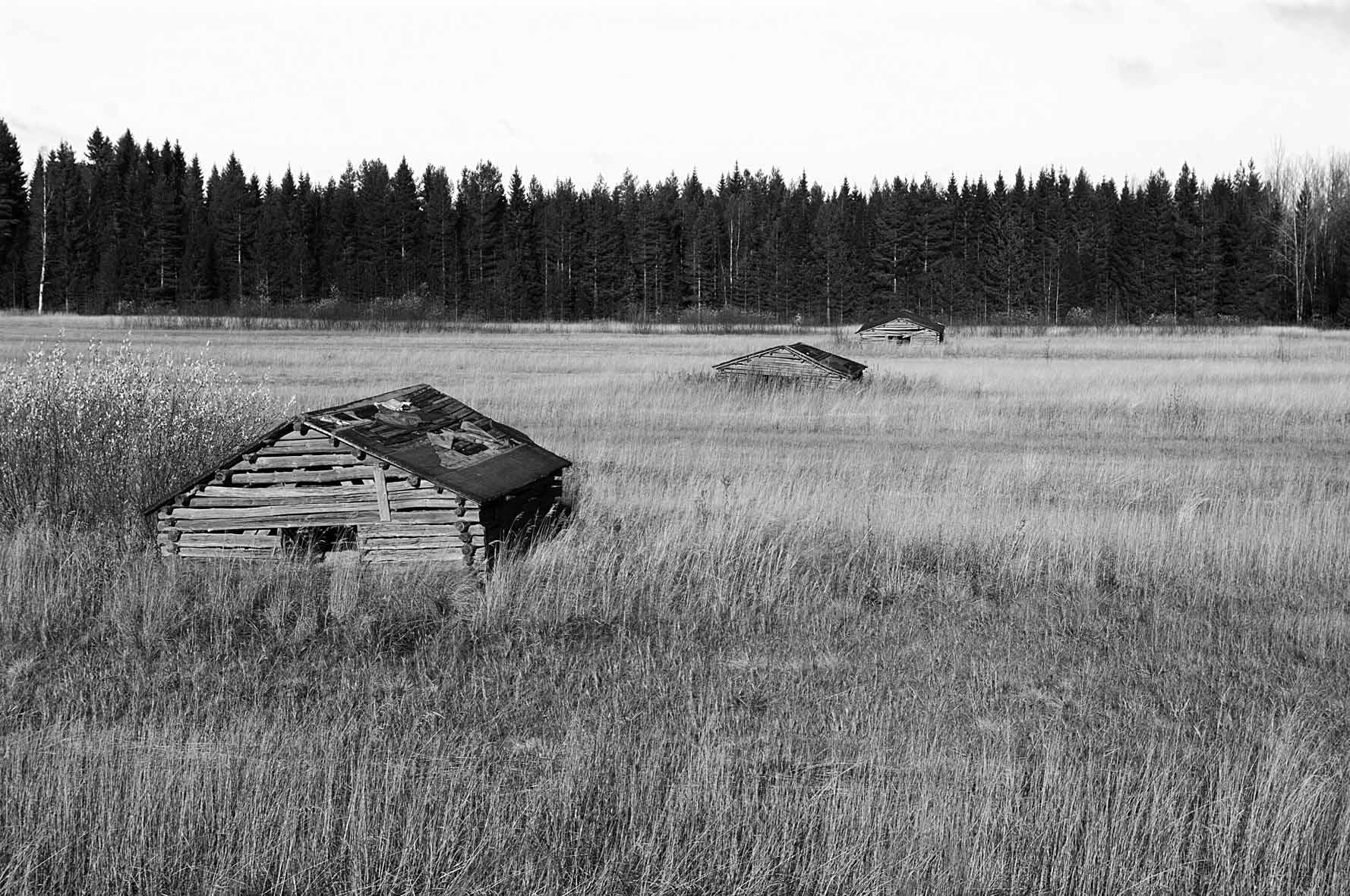 Mustavalkoinen kuva vanhoista ladoista suomalaisessa peltomaisemassa